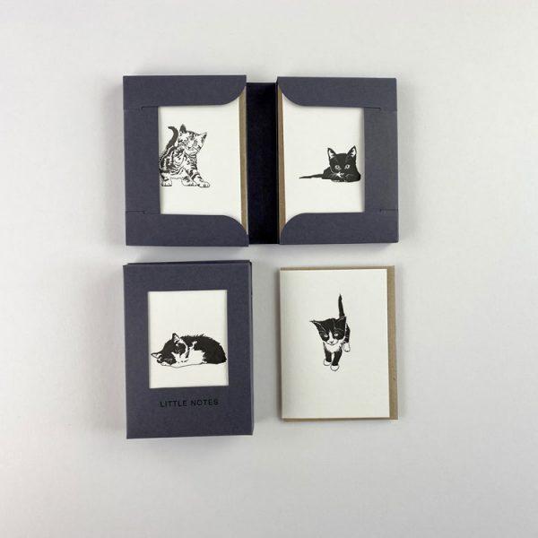 Pussycat Boxed Set