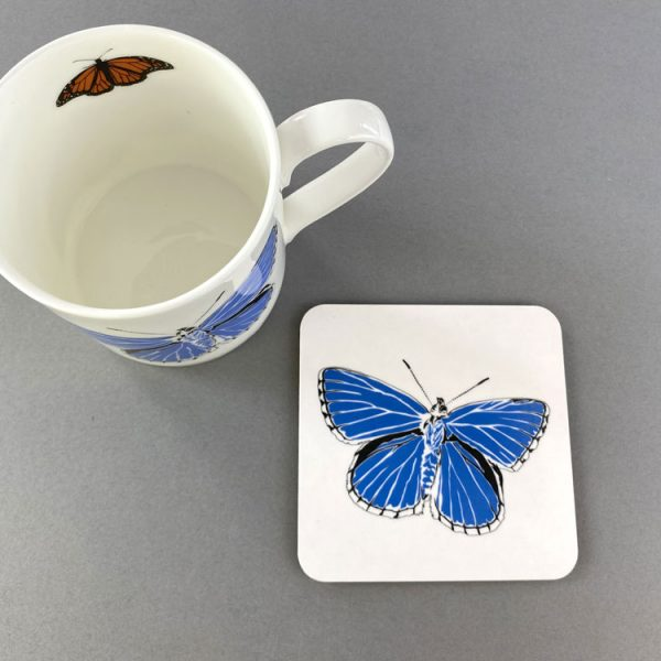 Blue Adonis Coaster